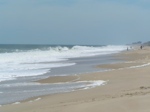 3R's Delaware Seashore State Park ... rough surf today