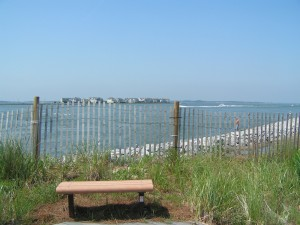 View from the deck at the Delaware Center for the Inland Bays