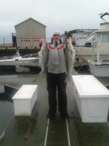 striped bass, delaware surf fishing, rockfish, stripers