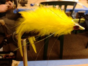Bushy Deceiver, fly tying, delaware surf fishing, saltwater fly anglers of delaware, fly fishing