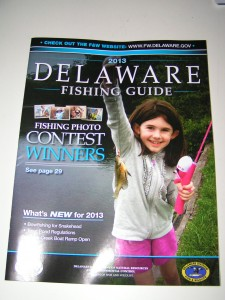 delaware fishing guide 2013, fishing, surf fishing, delaware surf fishing