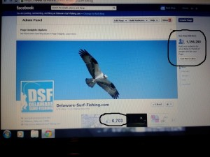 delaware surf fishing, advertising on DSF, internet marketing, DSF promotions,