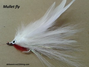 mullet fly, saltwater fly anglers of delaware, surf fishing, fly fising