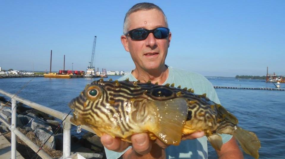 Delaware River Fishing Burr Fish Iri Indian River