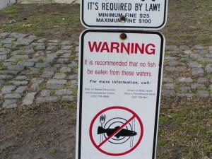 fish consumption advisory in Delaware