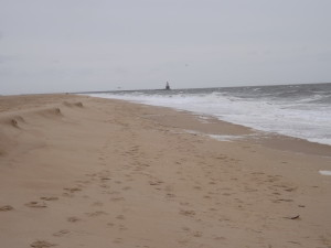 Beach conditions from the storm delaware surf for Dnrec fishing report