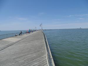 Cape Henlopen Fishing Pier, harbor of safe refuge