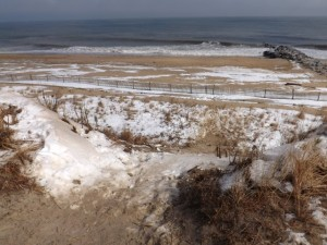 cape henlopen, sled run, dune sledding