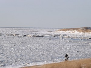 cape henlopen ice and snow, ice in delaware bay, ice on rehoboth beach, lewes, cape may lewes ferry, pilot boats, sussex county, pancake ice,