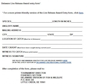 Catch and release citation form, DNREC, delaware, sussex county