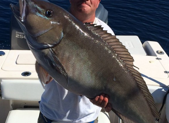 Delaware State Record 21.8-pound Blueline Tilefish Confirmed