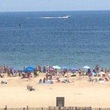 Whale sighted off OCMD and Fenwick Island headed south