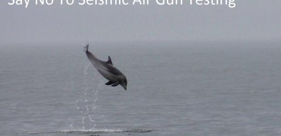 Seismic Airgun Testing Survey